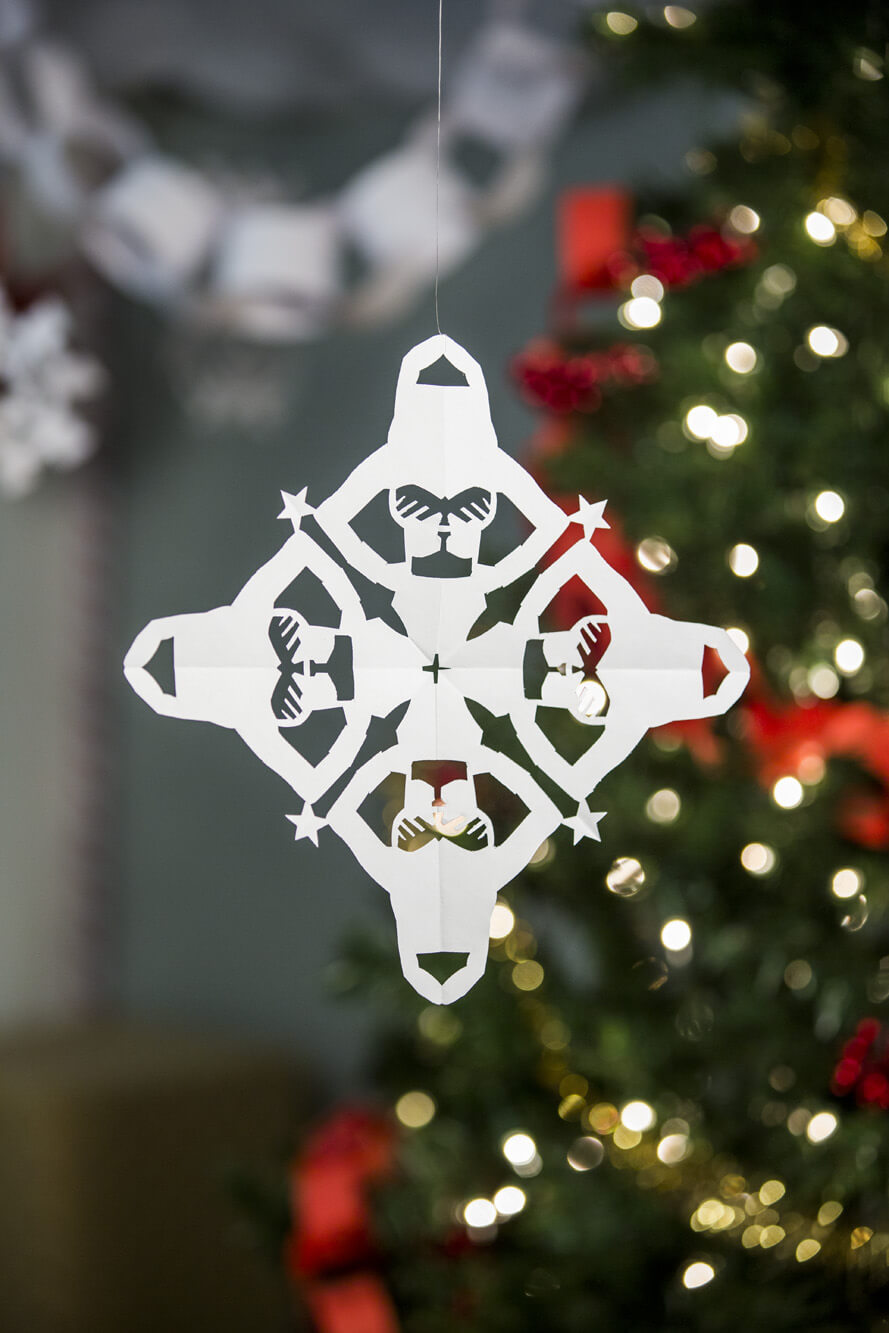 Wonder Woman Snowflake