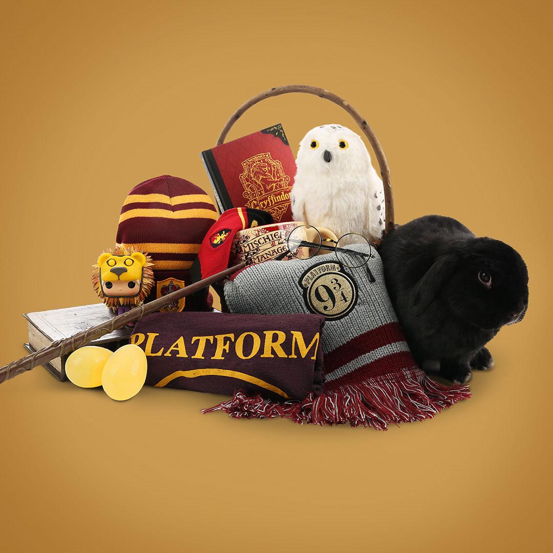 Harry Potter Easter Basket
