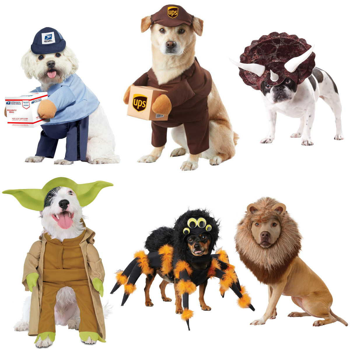 Popular Halloween Costumes for Pets in 2020