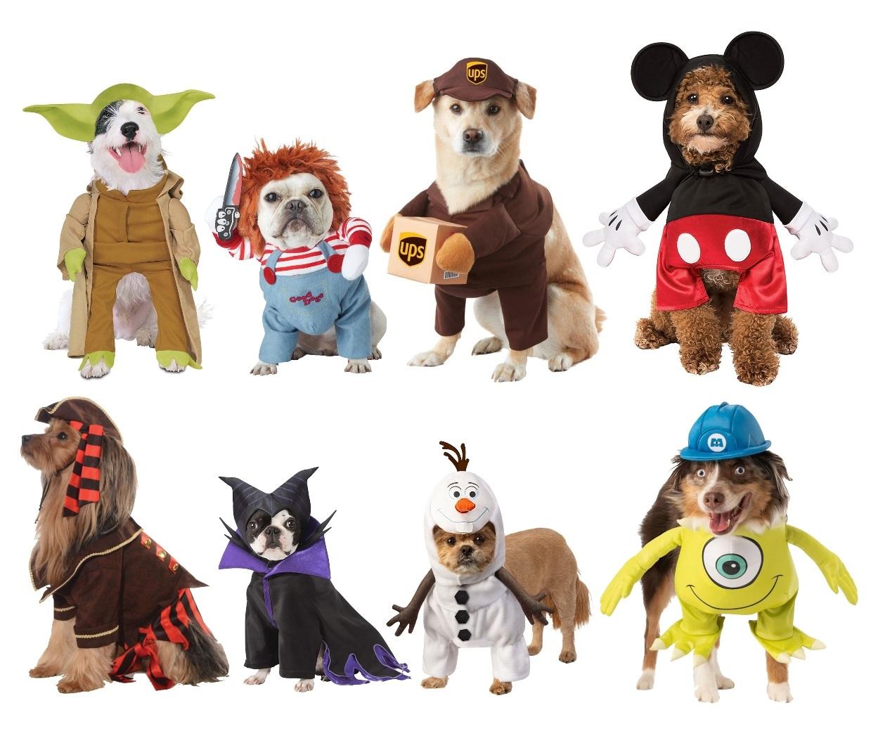 Popular Pet Costumes