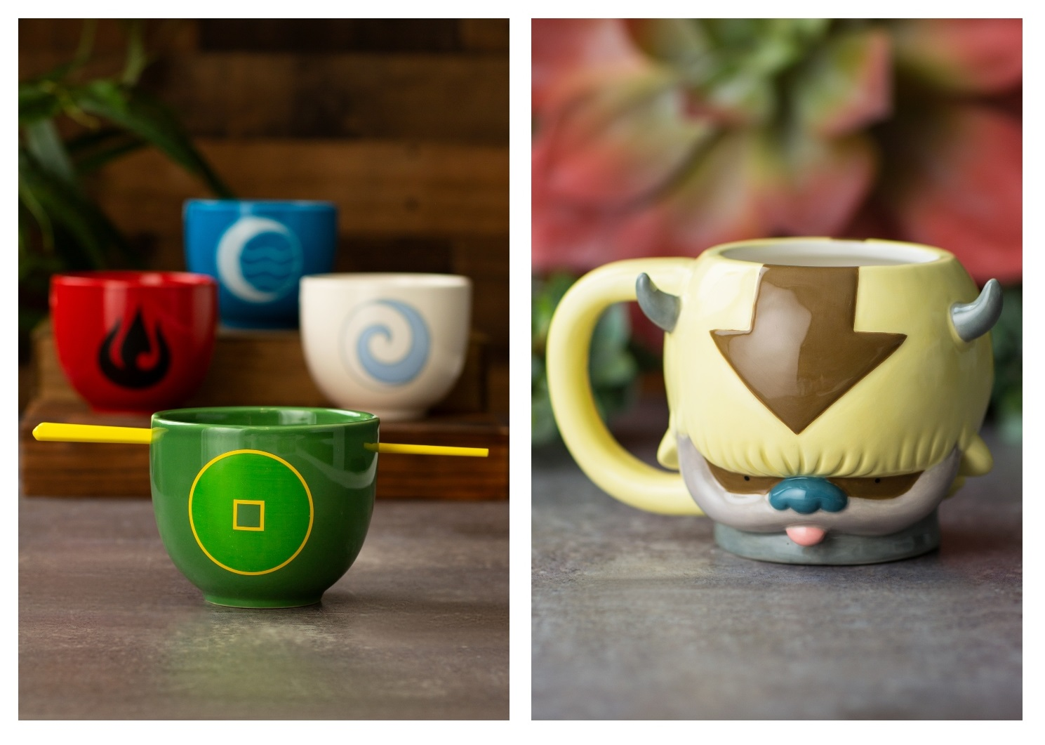 Avatar the Last Airbender Mug and Ramen Bowls
