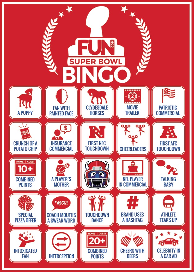Super Bowl 2015 Bingo