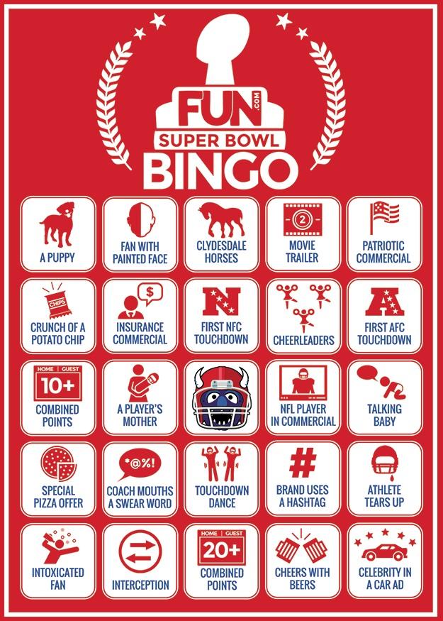 Super Bowl 2015 Bingo