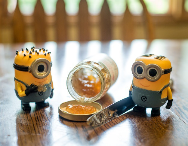 Minions with Jelly
