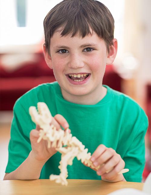 Dinosaur Model Kits