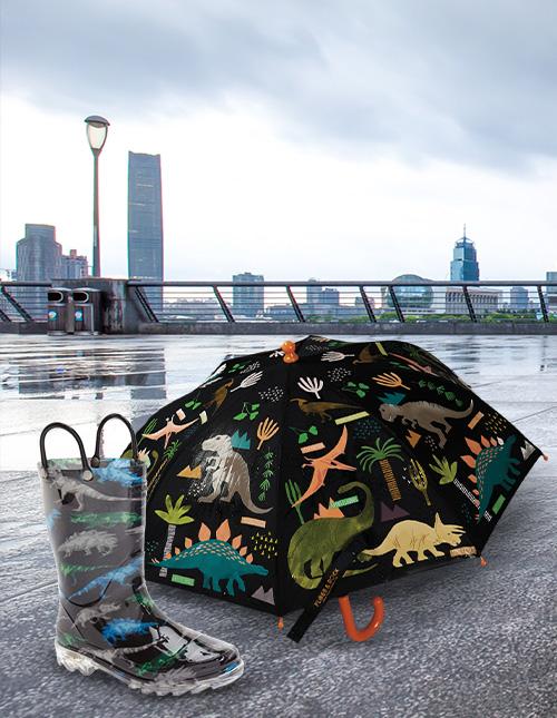 Dinosaur Rain Boots and Umbrellas