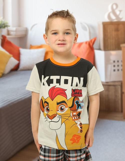 Lion Guard Shirt and Shorts