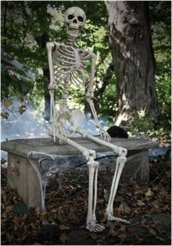 Realistic Posable Skeleton Alt 1