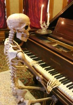 Realistic Posable Skeleton Alt 2