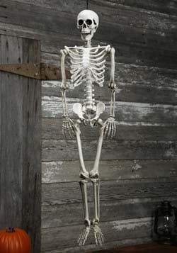 Realistic Skeleton Prop-0