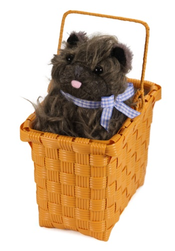 Toto in the Basket