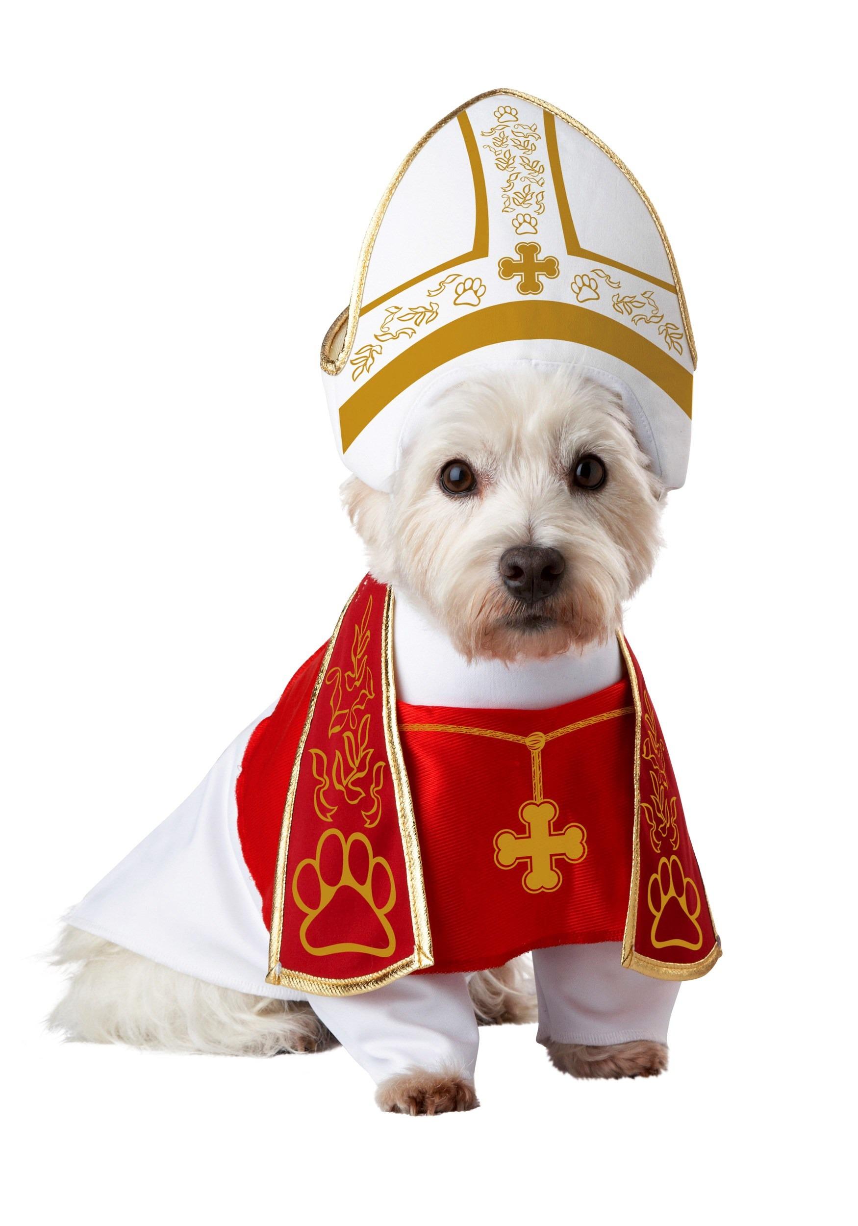 Holy Hound Dog Costume  sc 1 st  Fun.com & Holy Hound Pet Dog Costume