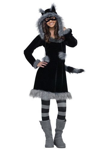 Sweet Raccoon Costume For Teens