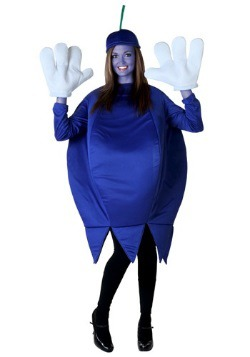 Blueberry Adult Costume