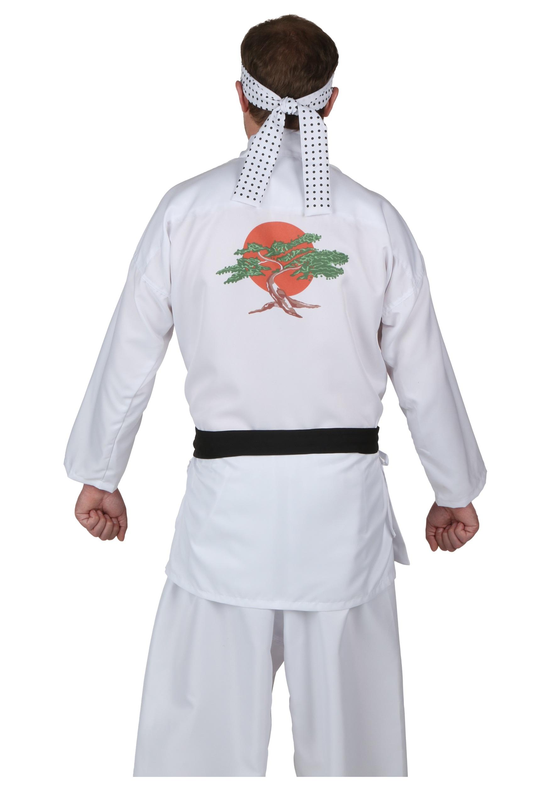 Danny San Karate Kid