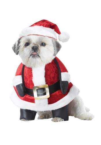Santa Pup Dog Costume