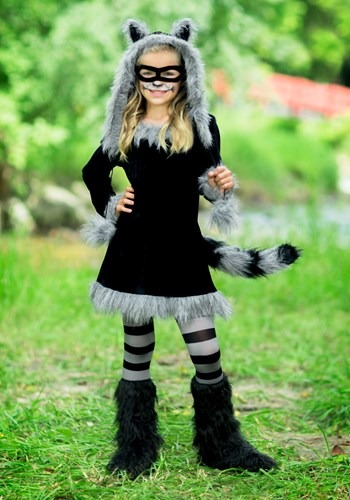 Girls Sweet Raccoon Costume