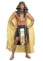 Plus Size King of Egypt Costume Alt 2
