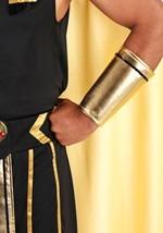 Plus Size King of Egypt Costume Alt 5