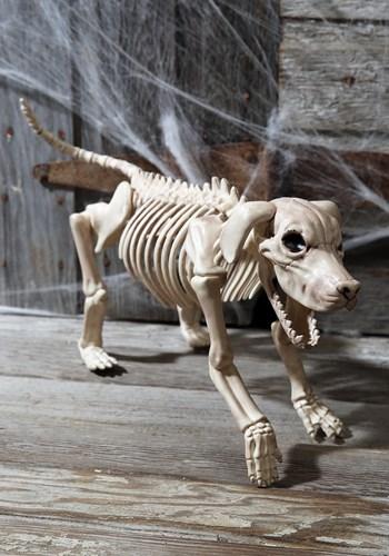 "Beagle Bonez 20"" Skeleton Dog Update 1"