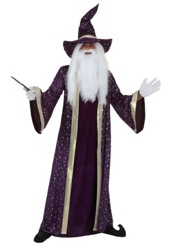 Purple Wizard Adult Costume