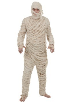 Mummy Men's Costume