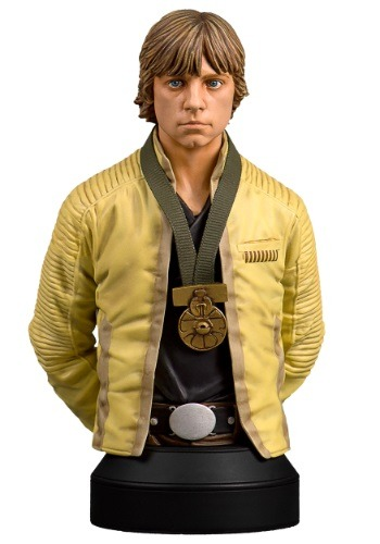 Gentle Giant Luke Skywalker Hero of Yavin Mini Bust
