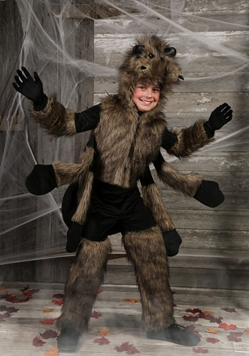 Furry Spider Kids Costume