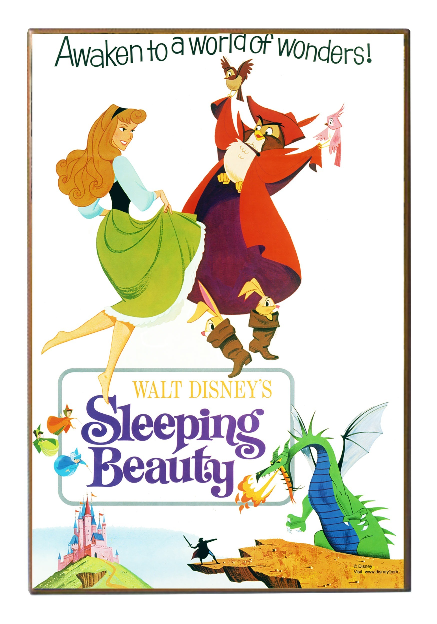 Sleeping Beauty 13 Quot X 19 Quot Wood Wall D 233 Cor
