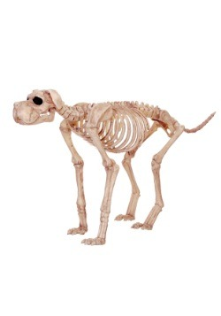 Bruiser Bonez the Skeleton Dog Decoration