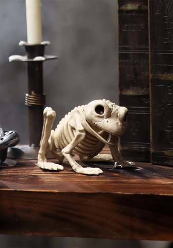 Halloween Decoration Skeleton Frog