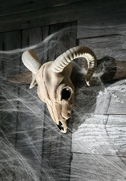 Ram Skull Halloween Decoration Update