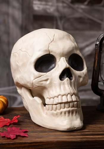 Large Skull Decoration