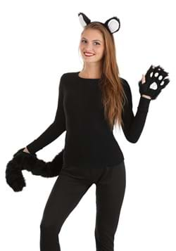 Deluxe Black Cat Accessory Kit