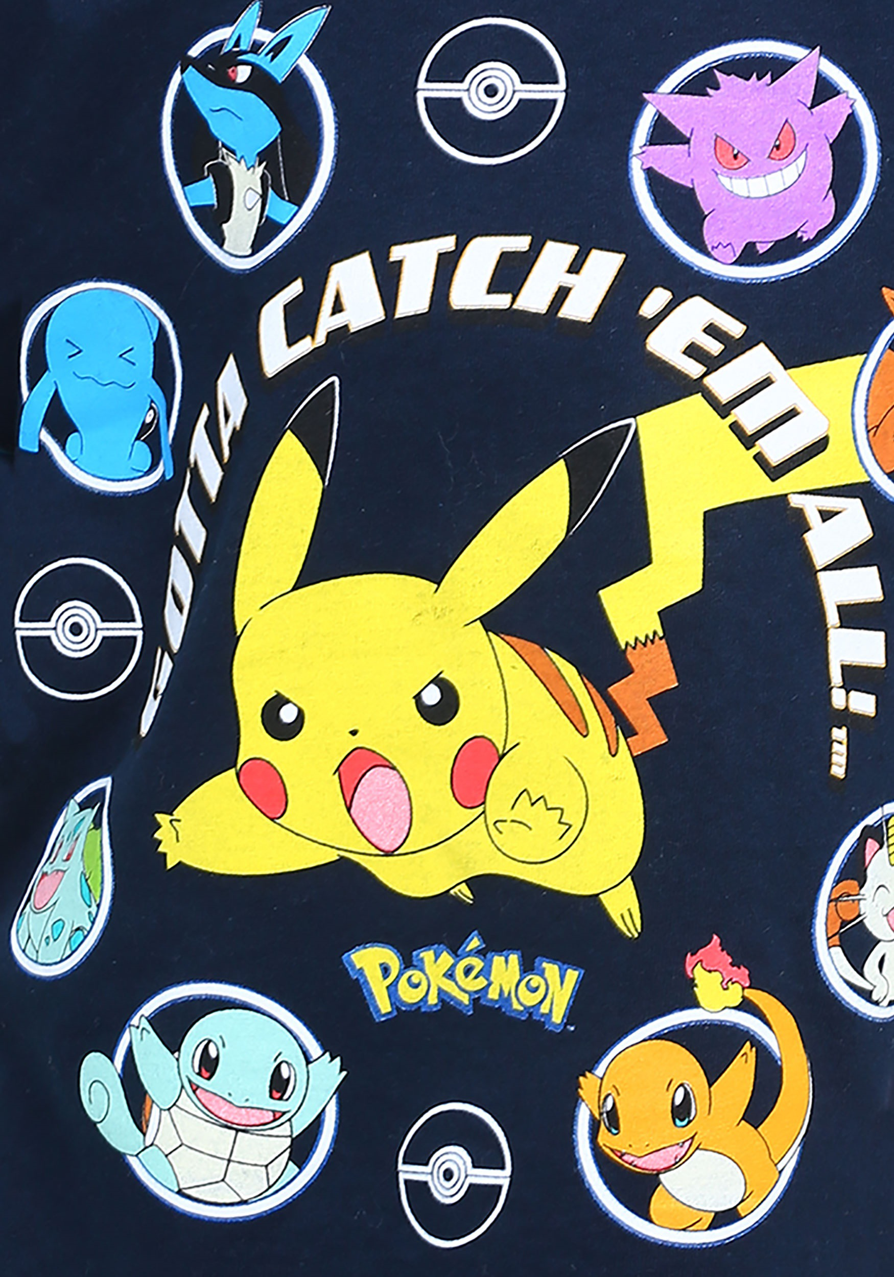 Pokemon Catch Them All Images