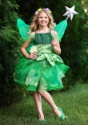 Garden Fairy Costume For Girls