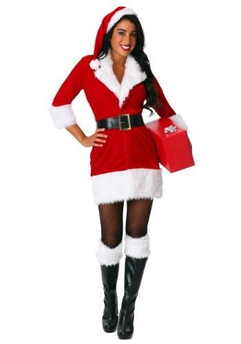 Womens Plus Size Secret Santa Costume