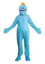 Adult Rick and Morty Mr. Meeseeks Costume