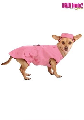 Bruiser Dog Legally Blonde 2 Costume