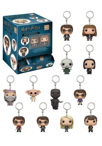 Harry Potter: POP Keychain Blindbag