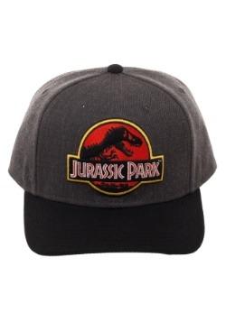 Jurassic Park Logo Snap Back Hat1