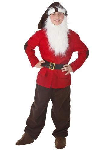 Kids Dwarf Costume1