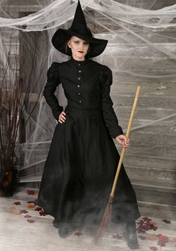 Women's Witch Plus Size Costume-update1