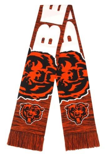 Chicago Bears Wordmark Big Logo Colorblend Scarf