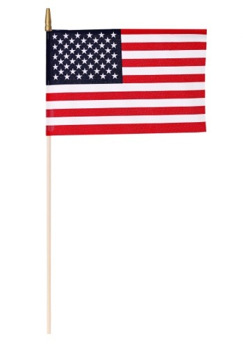 "Two 8"" x 12"" Stick US Flags"