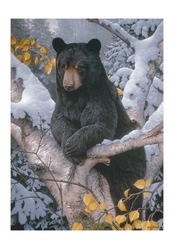 Black Bear 1000 Piece Cobble Hill Puzzle