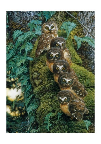 Family Tree 1000 Piece Cobble Hill Owl Puzzle