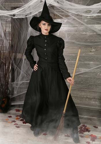 Deluxe Witch Women's Costume