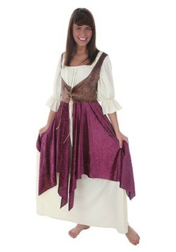 Tavern Lady Plus Size Costume