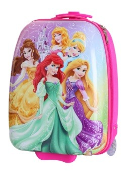 The Disney Princess Pilot Case